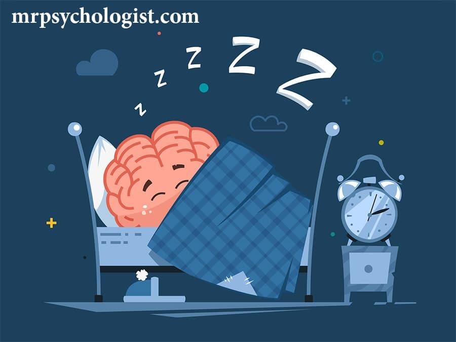 مغز ما در هنگام خواب چه کار میکند؟