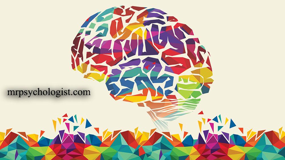 هوش چیست و چگونه از آن بهرهبرداری میکنیم؟